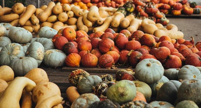 Top ten ways to eat up pumpkins!